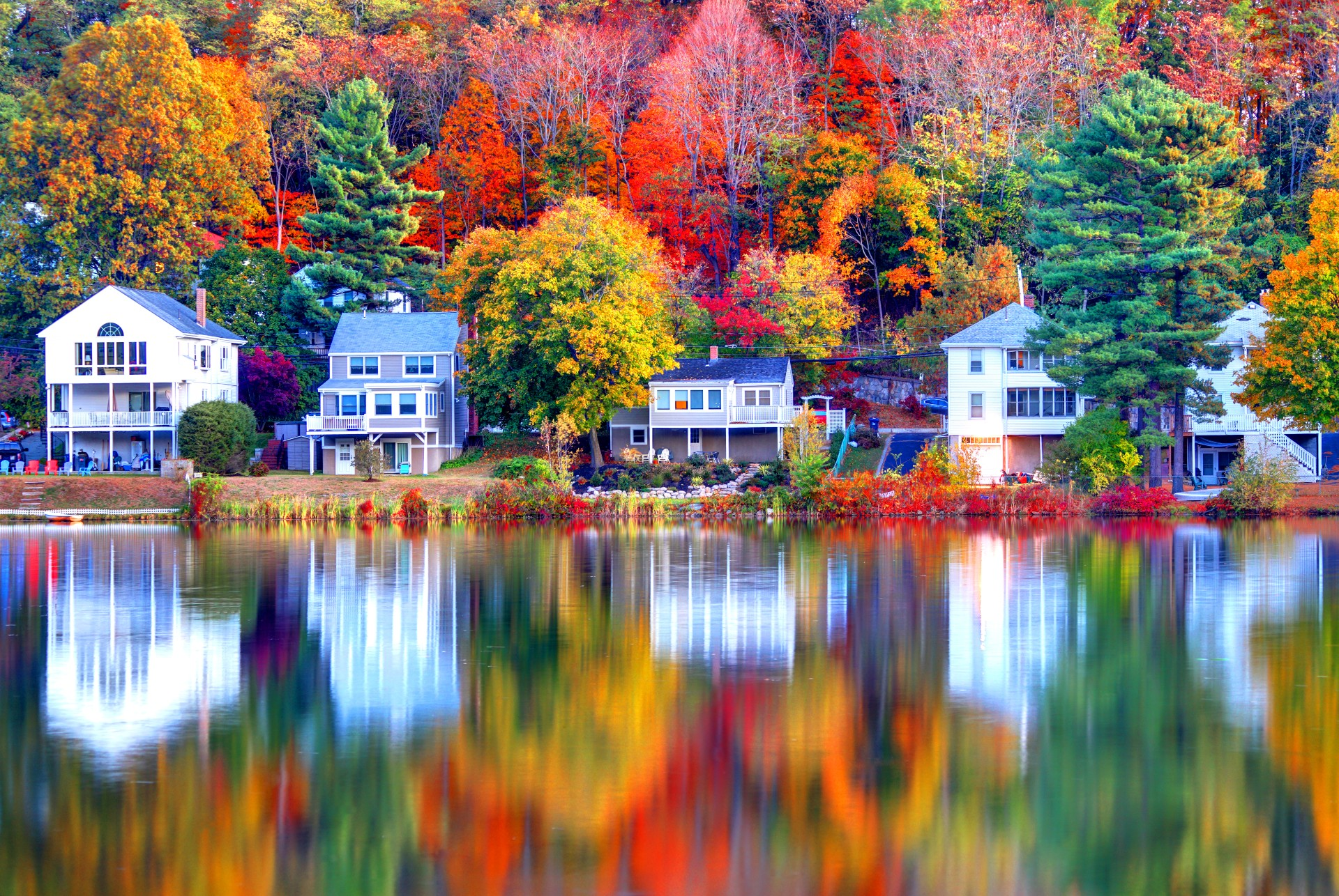 Aligned Houses and Autumn Tress at the back